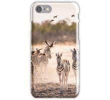 Zebra's Waterhole Etosha National Park iPhone Case/Skin