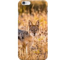 Jackal Etosha National Park iPhone Case/Skin