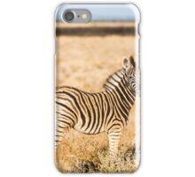 Zebra Pose Etosha National Park iPhone Case/Skin