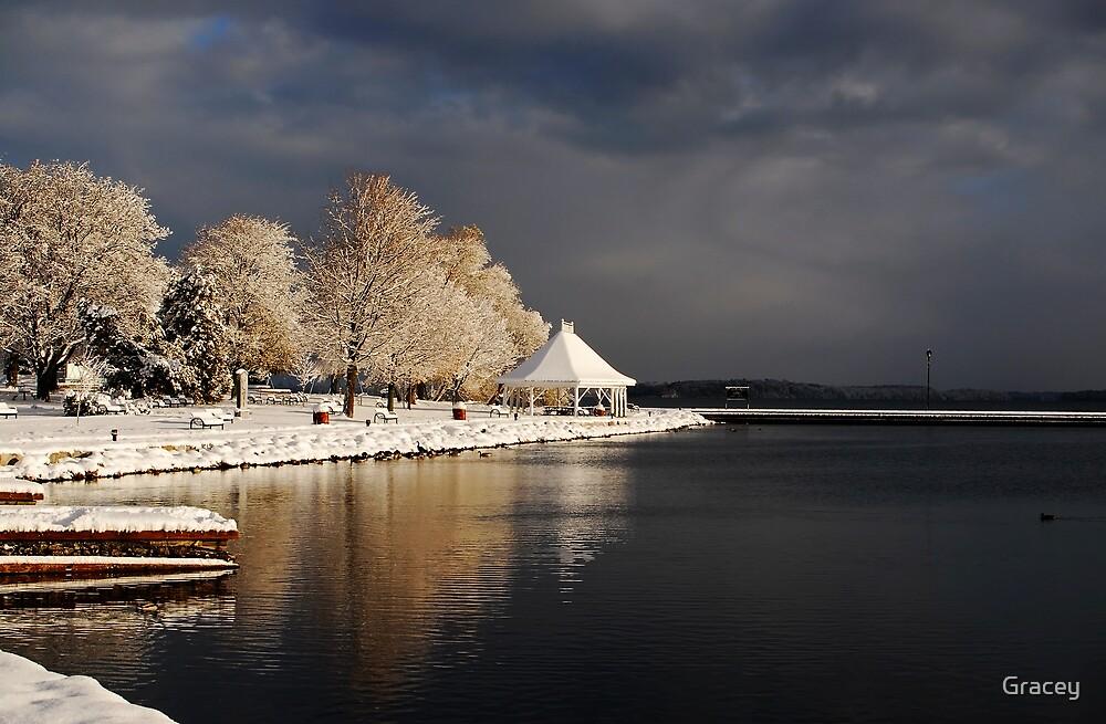 Winterlight by Gracey