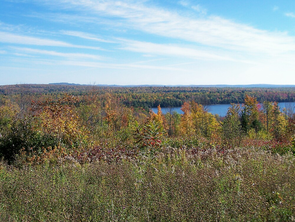 Lake In Autumn by Gene Cyr