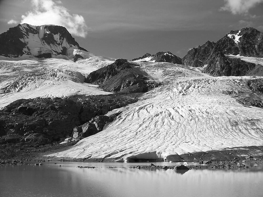 Glacier at Iceberg Lake  by Amber Carter