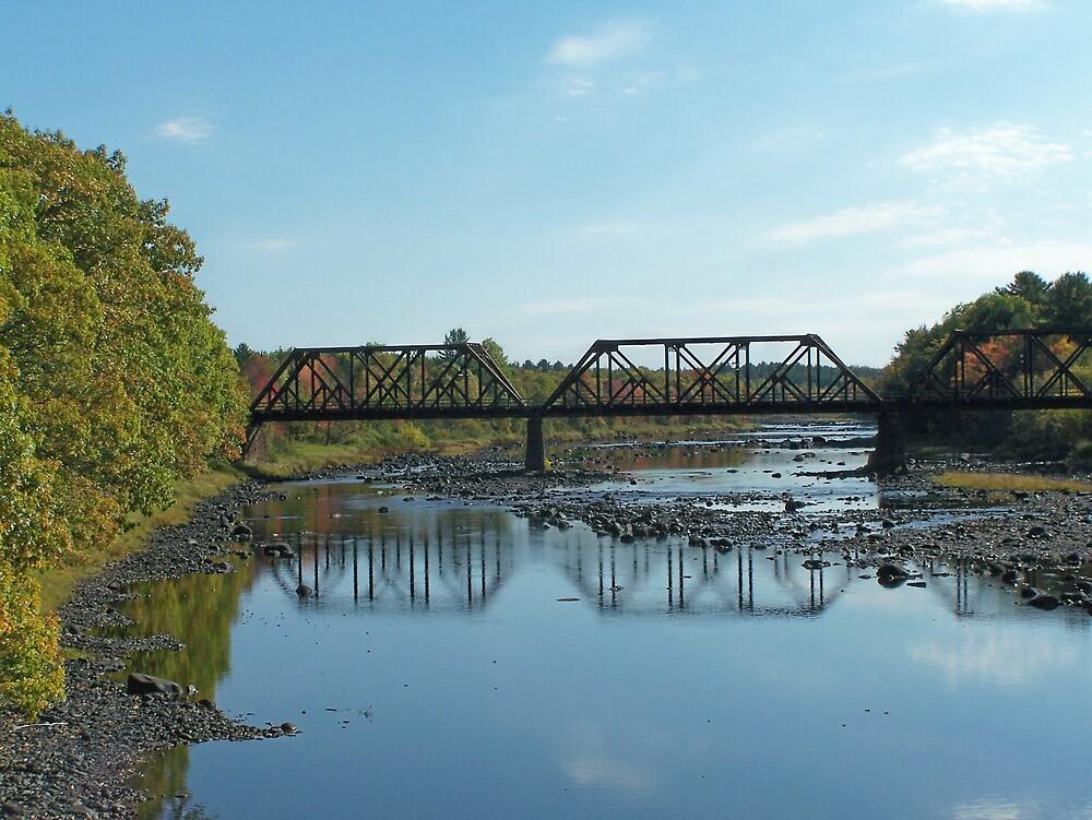 Old Bridge by Gene Cyr