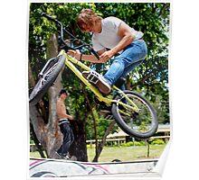 Skate Park Bike Ariel Poster