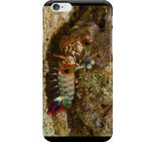 Mantis Shrimp iPhone Case/Skin