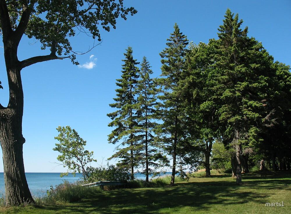 At the lake by marts1