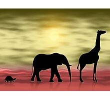 It's hot in Africa Photographic Print