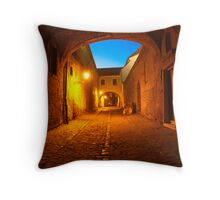 ..cold night/ warm light Throw Pillow