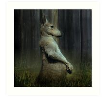 Portrait of a Kangaroo Art Print