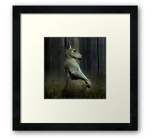 Portrait of a Kangaroo Framed Print