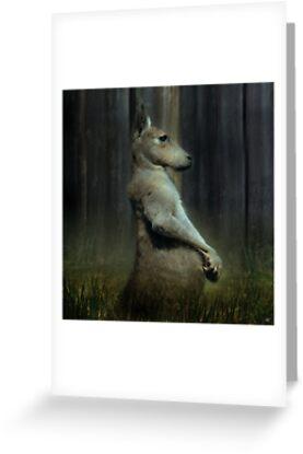 Portrait of a Kangaroo by Paul Vanzella