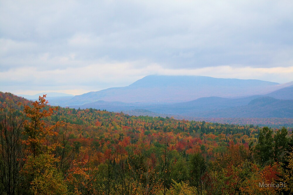 Northeast Kingdom Fall! by Monica31
