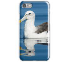 Shy Albatross - Port Fairy iPhone Case/Skin