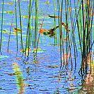 Wait Just A Monet Minute by Greg German
