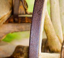 Wagon Wheel by Susan Gottberg