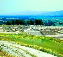 Remains of the Minoan Palace, Phaistos, Crete by Priscilla Turner