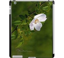 Country Rose - Cool Stuff iPad Case/Skin