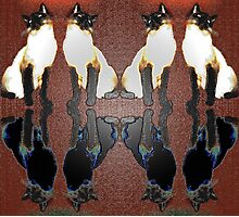 Siamese Reflections 3 Photographic Print
