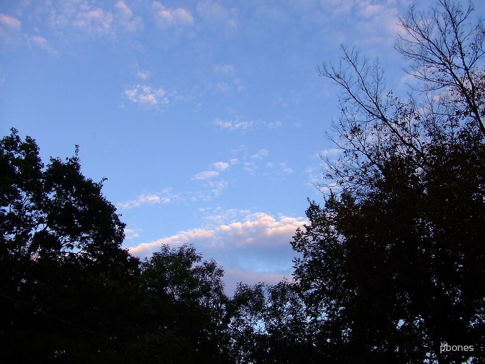 Skyline by pbones