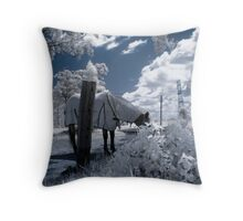May The Horse Be With You!! Throw Pillow