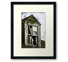 Watching windows...... Framed Print