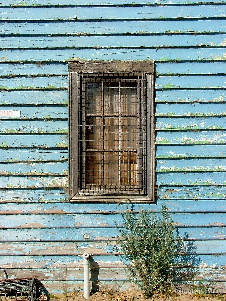 Blue Window by Bryan Cossart