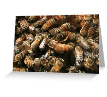 Queen Bee. Greeting Card