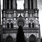 Notre-Dame Film Noir by Country  Pursuits