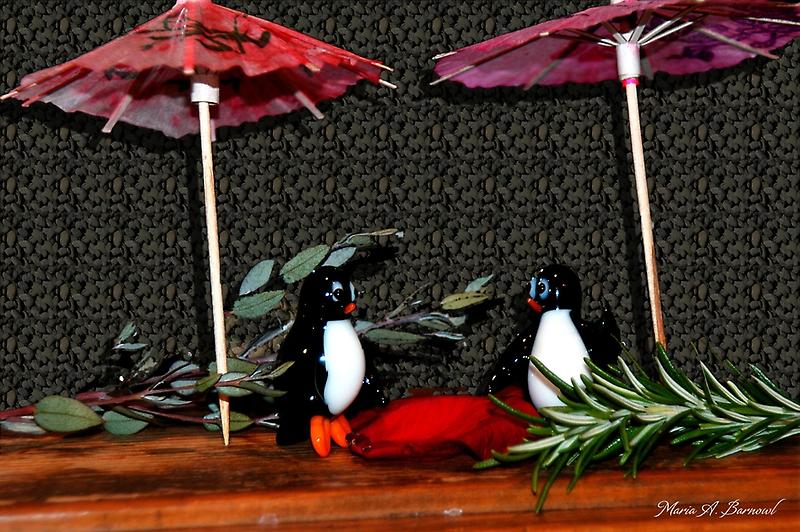 Penguin Romance by Maria A. Barnowl