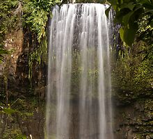Millaa Millaa Falls Far North Australia by Fury