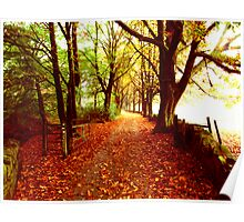 Colours of Autumn Poster