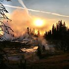 Early morning mist in Yellowstone by Robyn Lakeman