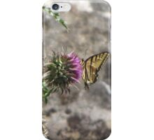 Butterfly, Western Tiger Swallowtail iPhone Case/Skin