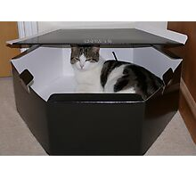 Well .. its my hatbox now!!! Photographic Print