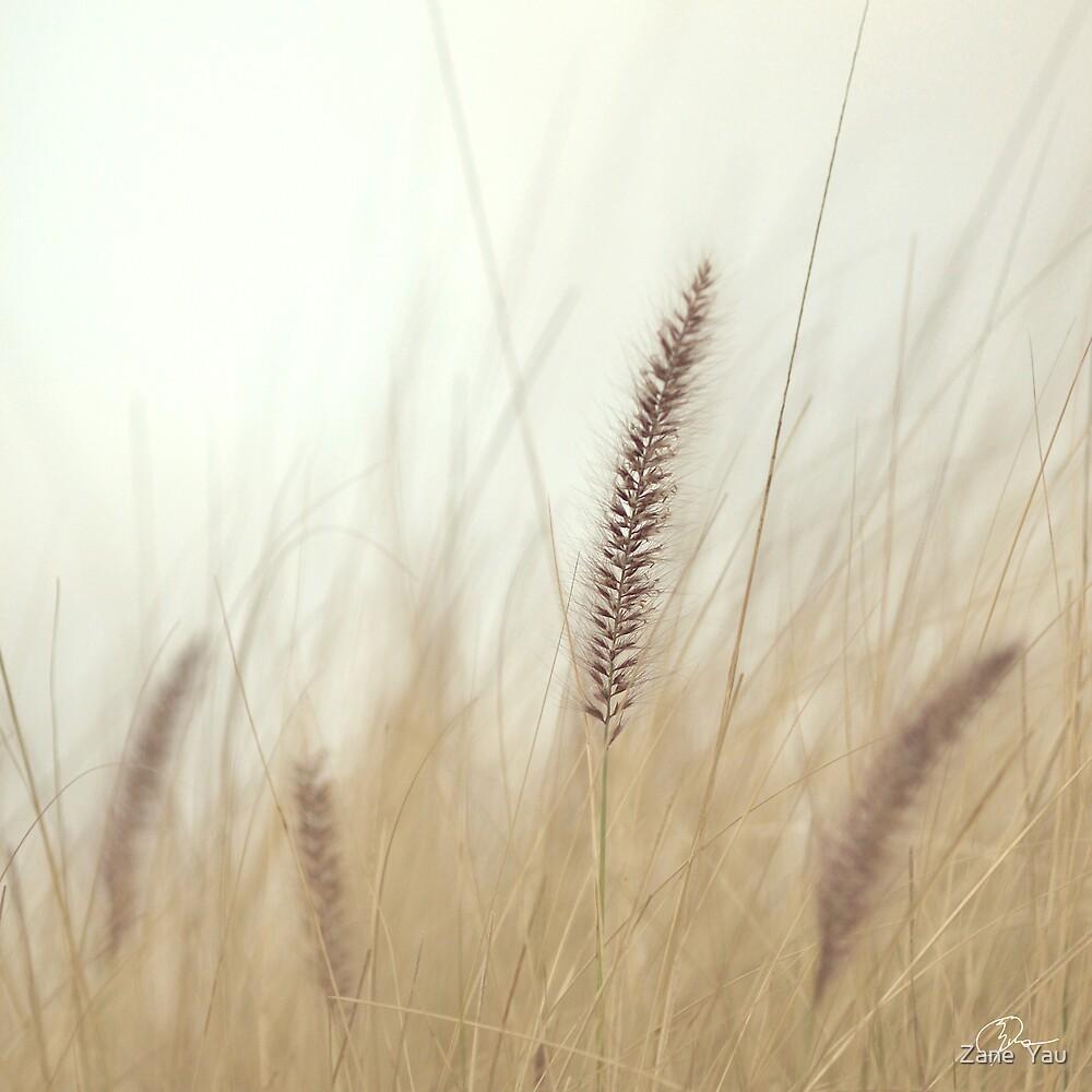 Soul by Zane  Yau