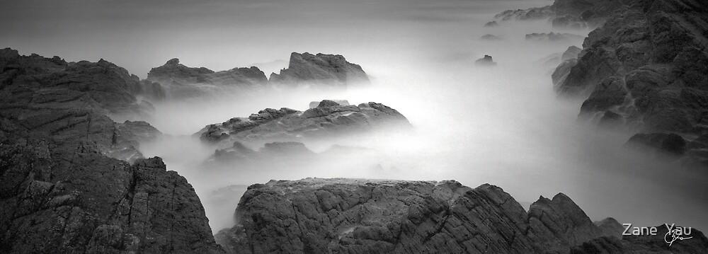 Seal Rocks by Zane  Yau