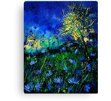 wild chicorees Canvas Print