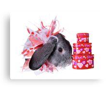 Valentines Day Rabbit Canvas Print
