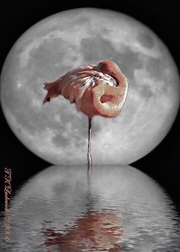 Famingo Moon by grinandbearit