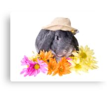 Country Gardener Rabbit Canvas Print