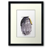Graduate Bunny Framed Print