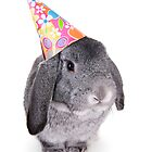 Birthday Rabbit by idapix