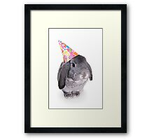 Birthday Rabbit Framed Print