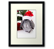 Christmas Rabbit Framed Print