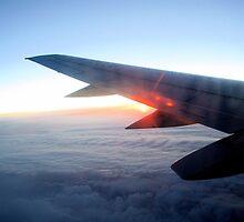 In Flight by fotologic