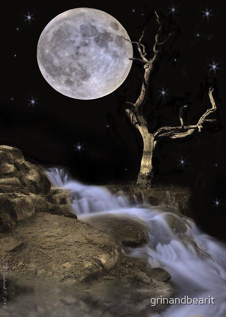 Midnight Bliss by grinandbearit