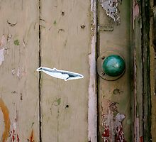 Whale by fotologic