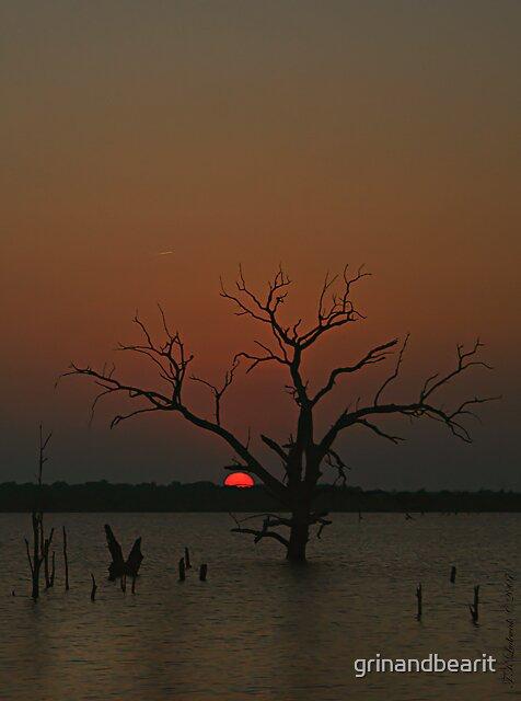 Sunset Silhouettes by grinandbearit