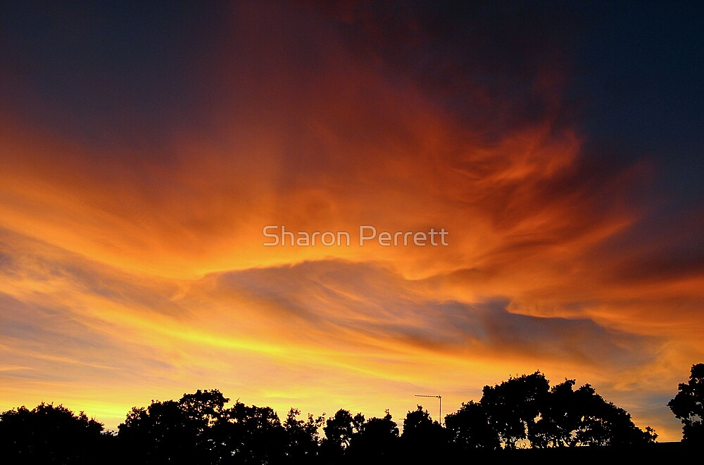 I'm on fire by Sharon Perrett