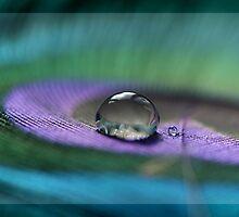:: Serene :: by silverdew